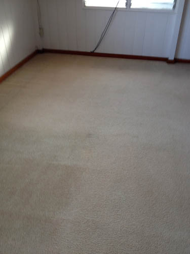 how to fix burn holes in carpet